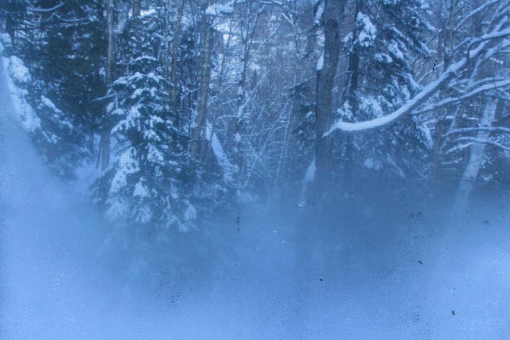 Givre hiver